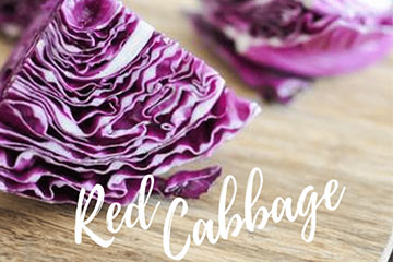 Superfood Spotlight: Red Cabbage
